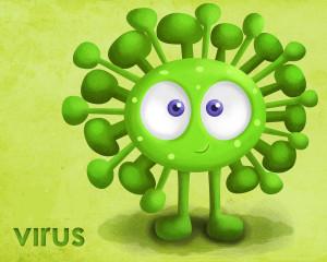 virus chripka